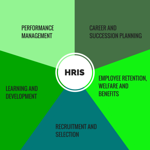 ExeQserve HR Auditing Services